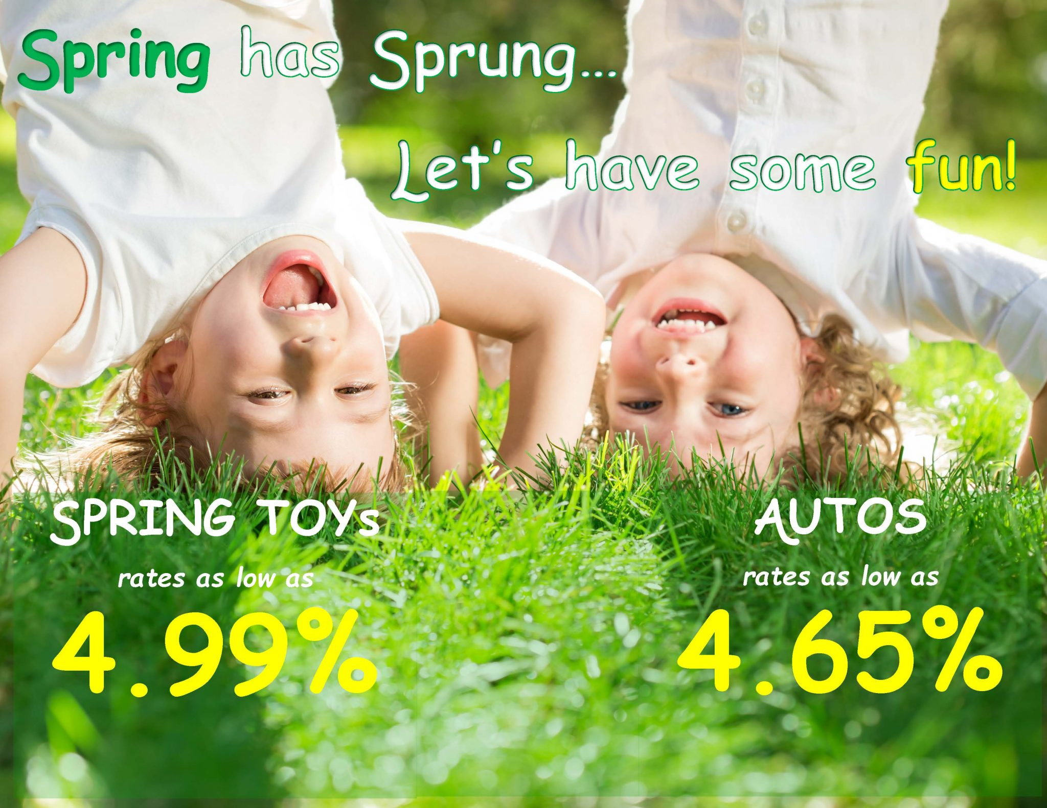 Spring has sprung auto loans banner