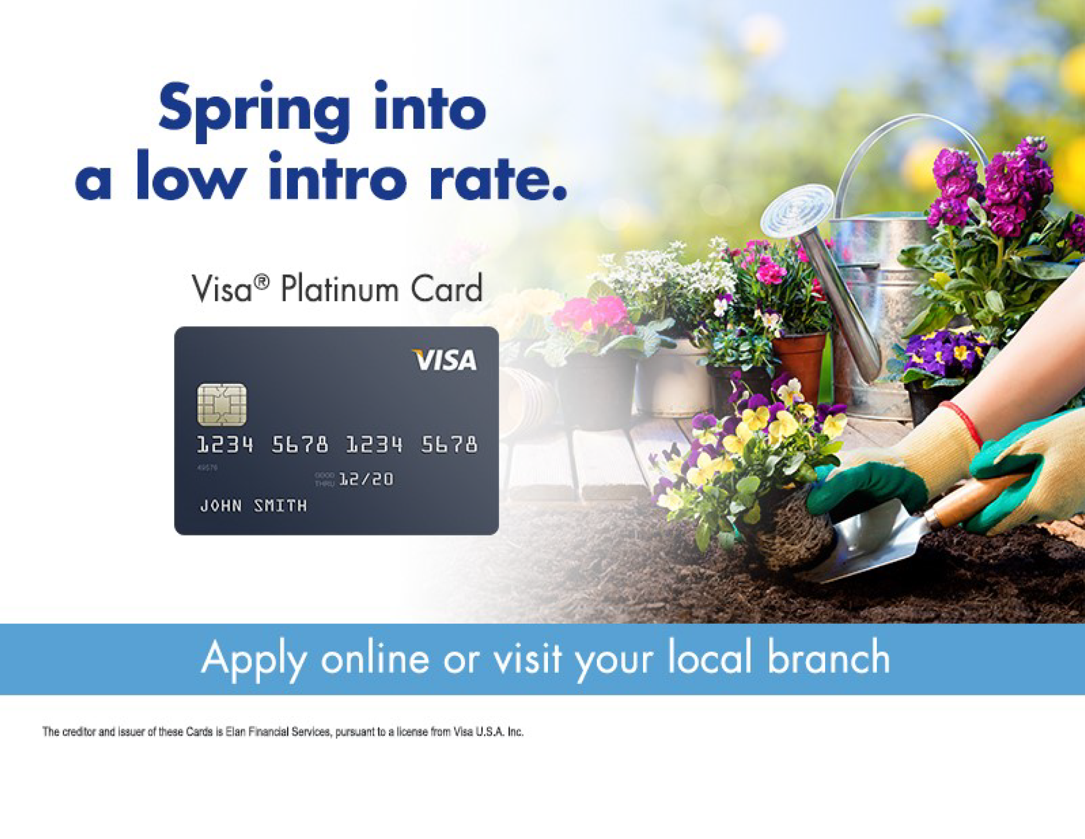 VISA platinum card promotion